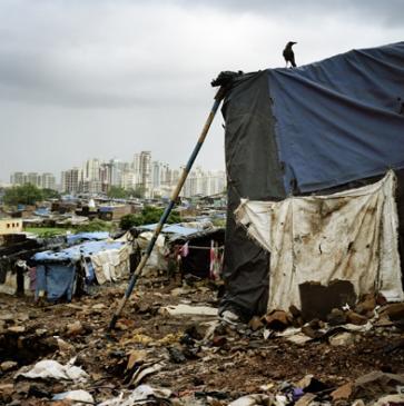 Bombay #06